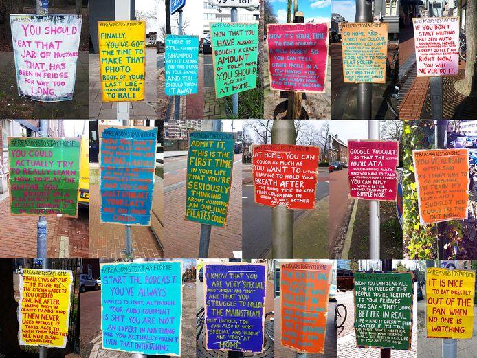 Een selectie van de kartonnen affiches van Miriam Schöne, die door heel de stad hangen.