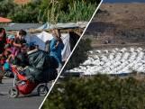 Dakloze vluchtelingen Lesbos sceptisch over noodkamp