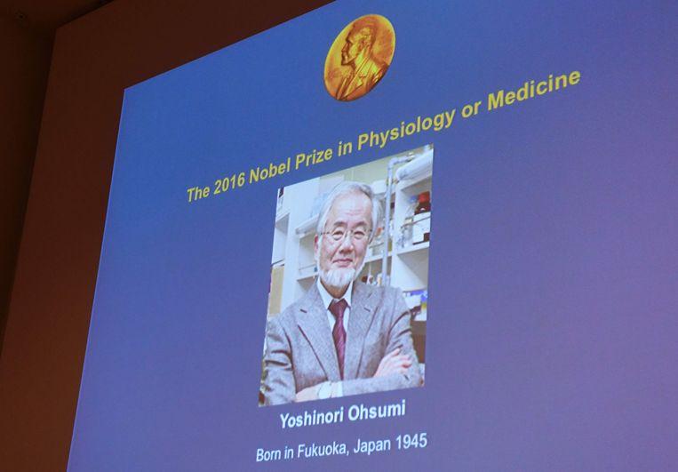 Een foto van Yoshinori Ohsumi wordt geprojecteerd tijdens de bekendmaking van de Nobelprijs Geneeskunde in Stockholm. Beeld AFP