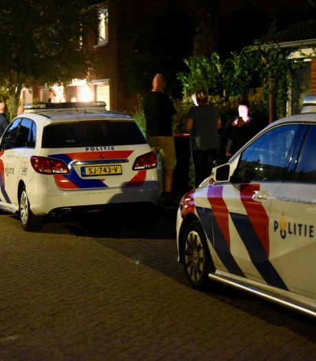 Opnieuw verdachte aangehouden voor gewelddadige woningoverval Houten