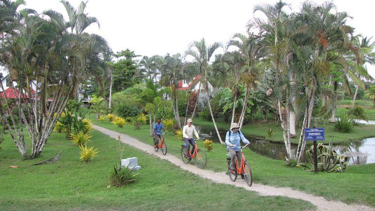Op de rustige plekken in de stad is het heerlijk fietsen.Onze gids Amar weet er als geen ander de weg. Beeld Frans de Graaf