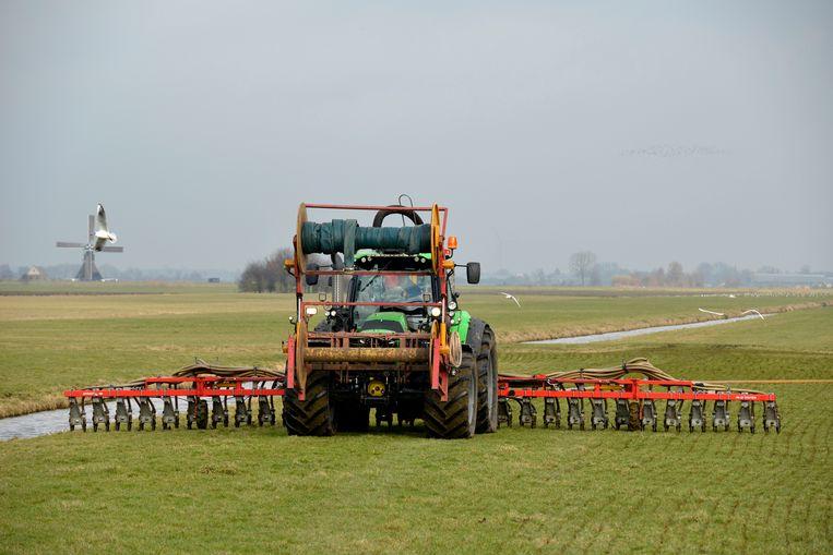 25 tot 40 procent van de Nederlandse mest belandt 'in het zwarte circuit', vermoedt het Planbureau voor de Leefomgeving Beeld Hollandse Hoogte / Fred Hoogervorst