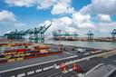 In de haven van Antwerpen zijn dit jaar al tientallen tonnen cocaïne onderschept.