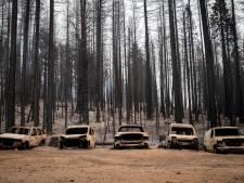 Nieuwe bosbrand in Californië legt binnen enkele dagen tijd al 215 vierkante kilometer in as