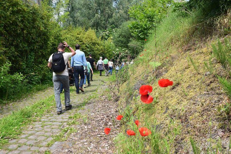 Illustratiebeeld: wandeling Natuurpunt.