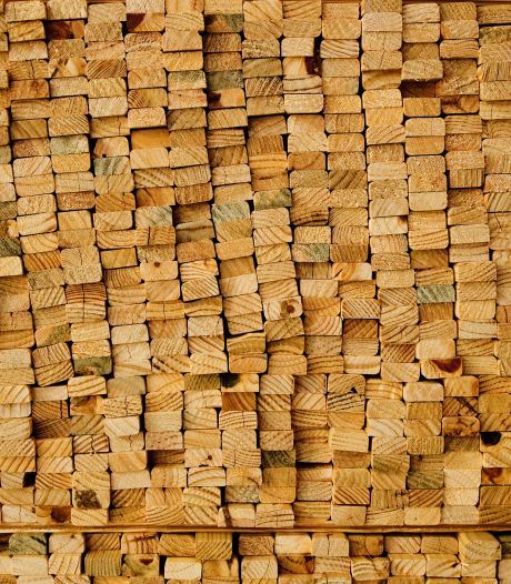 Vergeet die nieuwe schutting maar, extreem houttekort in Twente: 'Nog nooit meegemaakt'