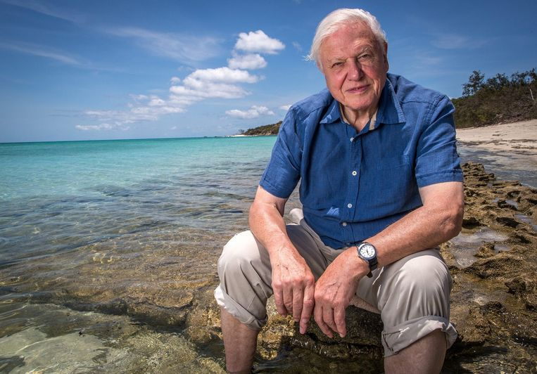 Documentairemaker Sir David Attenborough. Beeld EPA