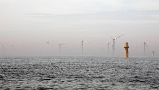 Minister: vissen tussen windmolens kun je ook buiten windparken testen