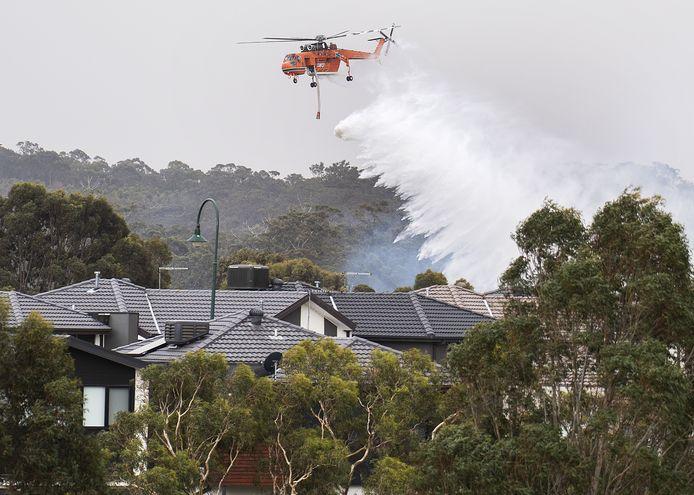 Een helikopter dropt water boven een buitenwijk van Melbourne in Victoria.