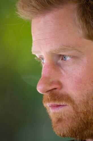 Het Britse koningshuis staat op zijn kop, en de aanstoker is een sympathiek ogende prins