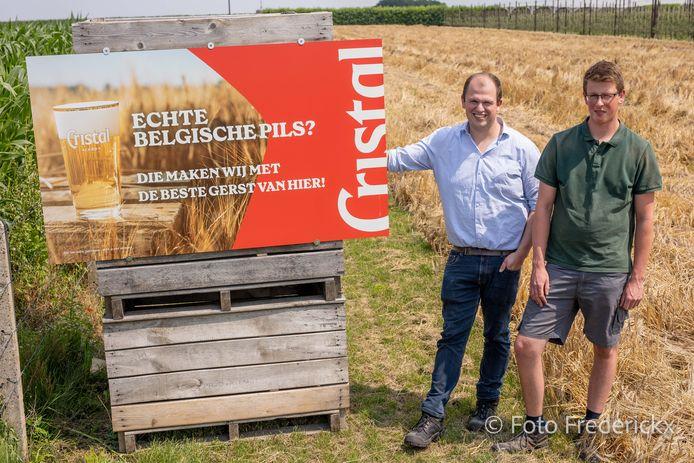 Dieter (links) en Maarten op het gerstveld, dat klaar is voor de oogst.