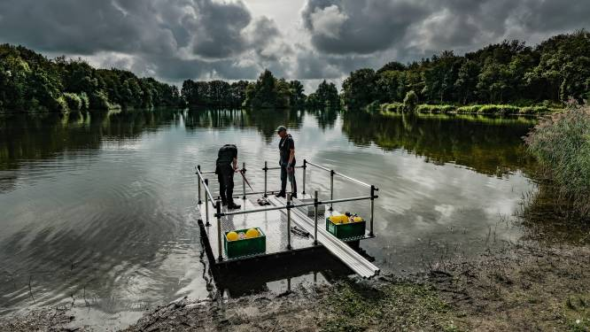 Drijvende zonnepanelen in Markeplas: niet voor stroom, maar als experiment