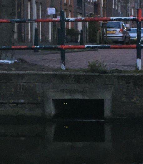 Al weken vermiste kat uit Leiden duikt op in Haags riool: 'Eigenaresse was door het dolle heen'