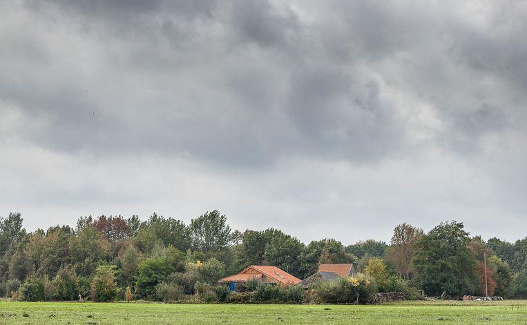 Aan de Buitenhuizerweg bij Ruinerwold (Drenthe) staat een woonboerderij waar jarenlang een gezin met kinderen in een kelder afgesloten van de buitenwereld heeft gewoond. Beeld Harry Cock