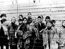 De Dag van de Holocaust