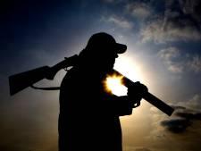 Onbegrip bij boerenorganisatie over schietverbod Gelderland: 'We weten dondersgoed dat ze veel schade veroorzaken'