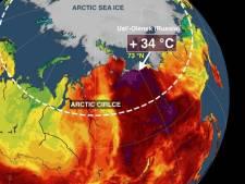 Il fait 34 degrés au pôle Nord et c'est tout bonnement affolant