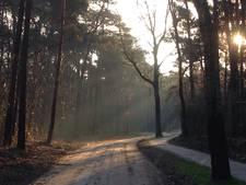 Steeds meer paden afgesloten op Vrachelse Heide