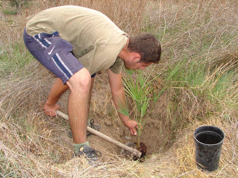 Een vrijwilliger van Acude aan het werk. Beeld Acude