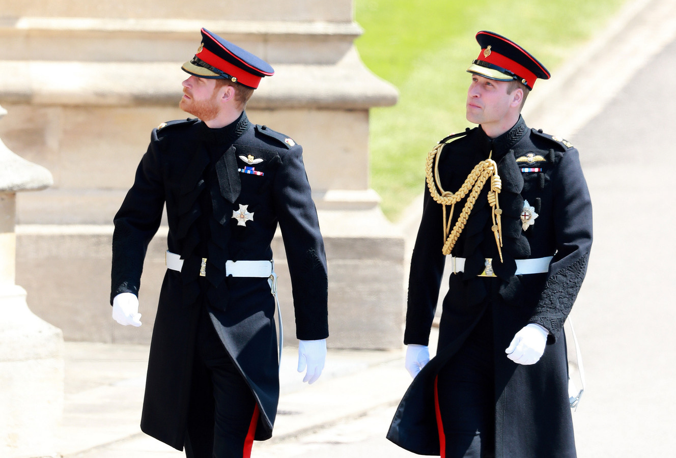 Prins Harry en zijn oudere broer William