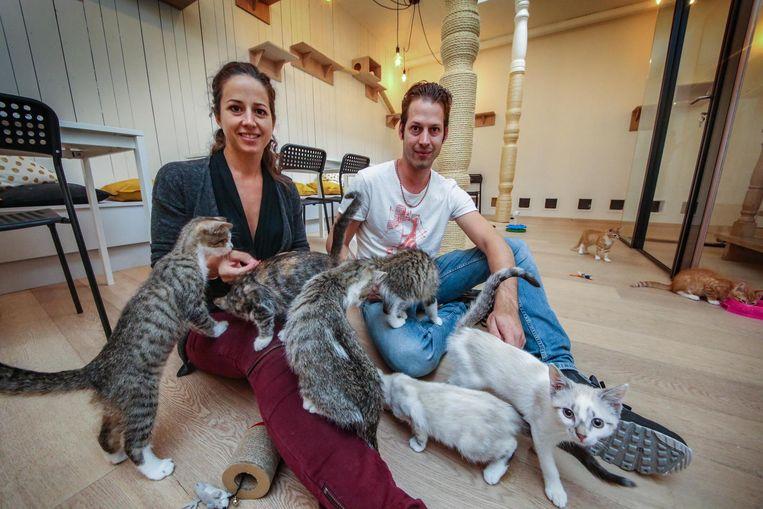 Birgit Verbeke en haar broer Arne openent op 10 september hun kattencafé Kuro Neko.