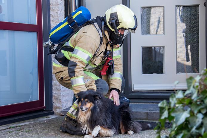 De brandweer heeft een hond uit het huis bevrijd.