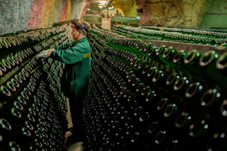 Om de 15 dagen draait een vrouwenbrigade de rijpende flessen in de stellingen een kwartslag. Beeld Emile Ducke