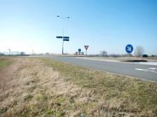De N337 tussen Deventer en Wijhe wordt een weg met bloemrijke bermen voor bijen en andere insecten