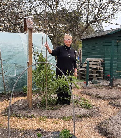 Lange wachtlijst voor een moestuin in Hulsen: 'Je kunt hier al je zorgen in de grond stoppen'