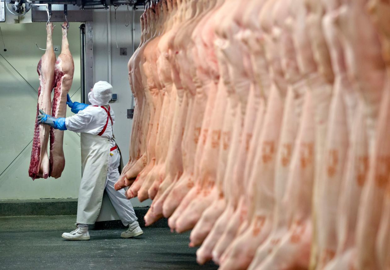 Sommige dieren worden gedood in abattoirs en opgegeten, andere worden vertroeteld en gezien als gezinslid. Beeld AP