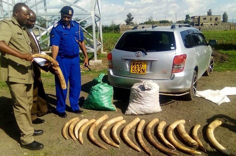 Olifantenslagtanden gevonden in Kenia.