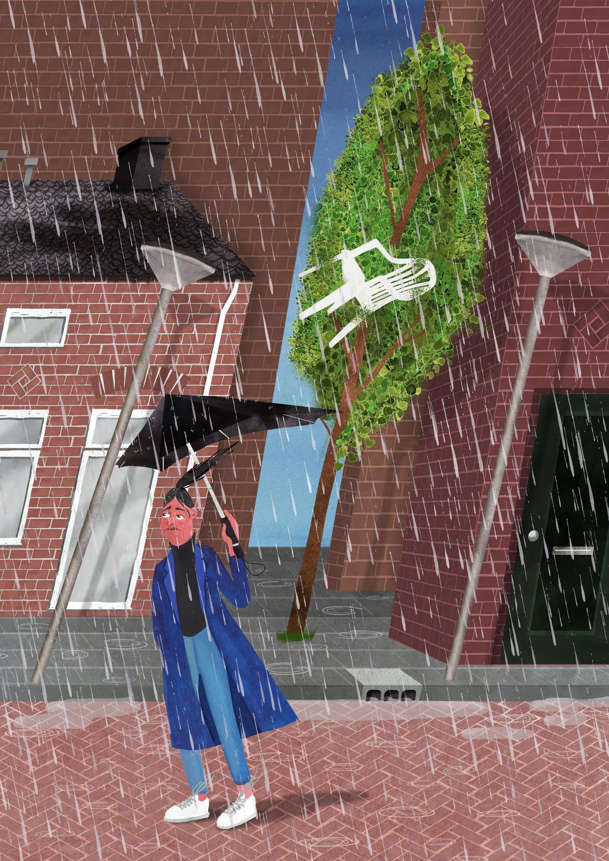 Bomen zijn goede windvangers, maar veroorzaken ook gevaar en overlast tijdens een storm.