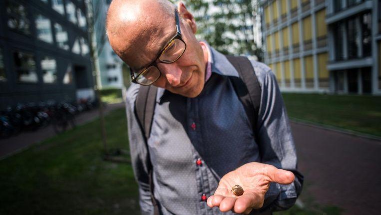 Onderzoeker Menno Schilthuizen bestudeert de evolutie van stadsdieren Beeld Joris van Gennip