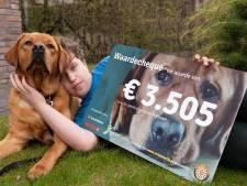 De hulphond van Hessel uit De Lutte mag verder studeren