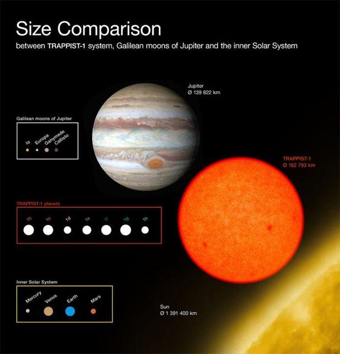 Dit diagram vergelijkt de afmetingen van de recent ontdekte planeten rond de zwakke rode ster TRAPPIST-1 met die van de grootste manen van Jupiter en van de binnenste planeten van ons zonnestelsel. Alle planeten rond TRAPPIST-1 zijn qua omvang vergelijkbaar met de aarde.
