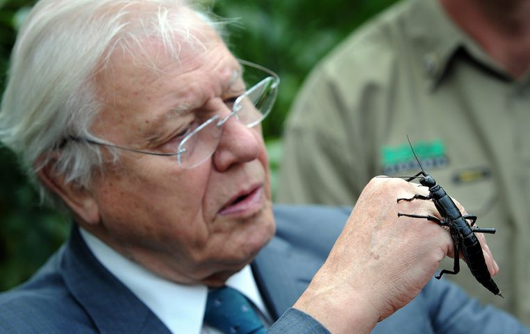 Sir David Attenborough Beeld epa