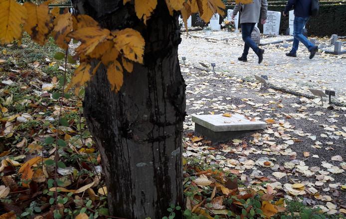 Op begraafplaats Spindermolen worden een kleine 200 graven geruimd.