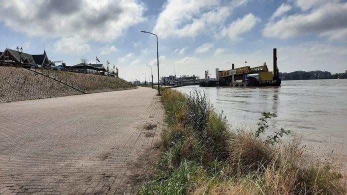 De Rijn bij Tolkamer stijgt nog, maar zal naar verwachting niet hoger komen dan 14.20 meter.