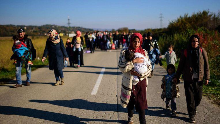 Vluchtelingen passeren de Slovenische grens bij Rigonce. Beeld afp