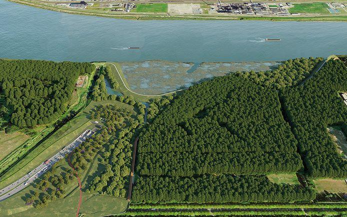 Op Linkeroever zal de nieuwe Scheldetunnel tussen Blokkersdijk en het Sint-Annabos onder het water duiken.