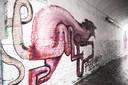 De roze rat van kathaoir.