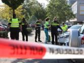Dennis dwong verdachte dodelijke steekpartij Den Bosch op knieën: 'Heb kinderwagen meteen weggedraaid'