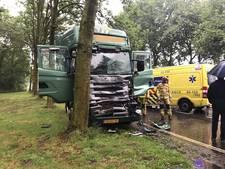 Vrachtwagenchauffeur gewond na knal tegen boom in Almelo