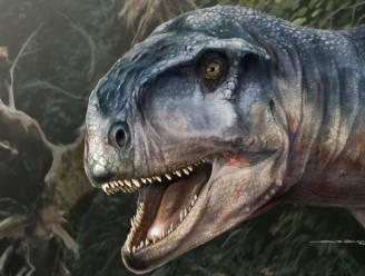 """Schedel van """"angst inboezemende"""" dinosaurus gevonden in Patagonië"""
