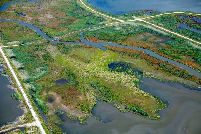 Luchtfoto van de Marker Wadden. Het gebied is volgens Natuurmonumenten een van de grootste natuurherstelprojecten in Europa, bedoeld om de biodiversiteit terug te brengen. Beeld Hollandse Hoogte /  ANP