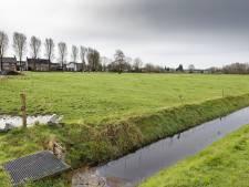 Raadslid wil 'opstand' tegen woningen Esch: 'Hier zit niemand op te wachten'