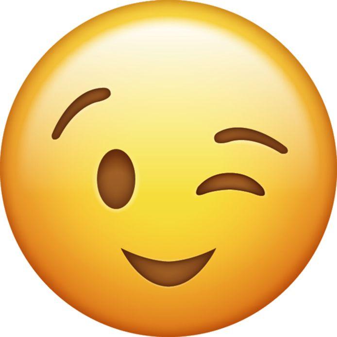 Een smiley kan veel communicatieleed voorkomen   Opinie   ed.nl