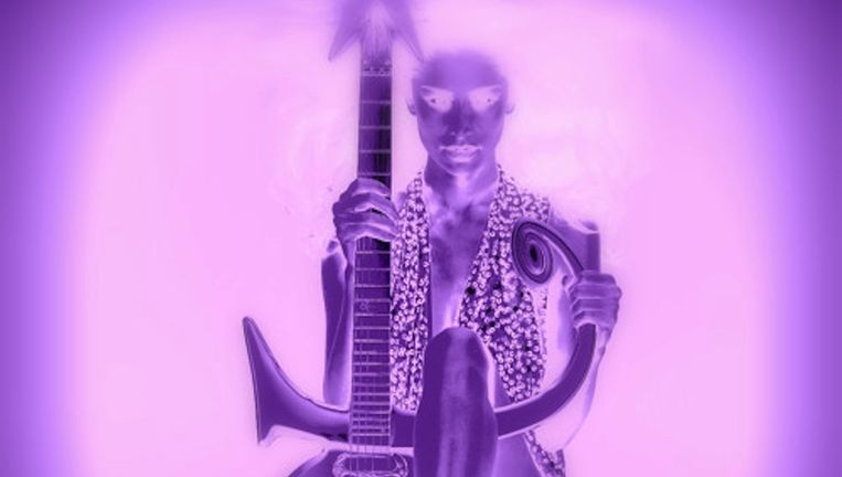 Prince3EG. Beeld rv