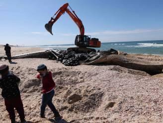 Israëlische kust zit na 'ecologische ramp' over tientallen kilometers onder de teer
