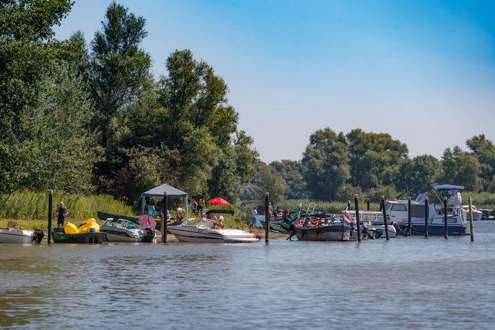 Drukte in de Biesbosch, zomer 2020.